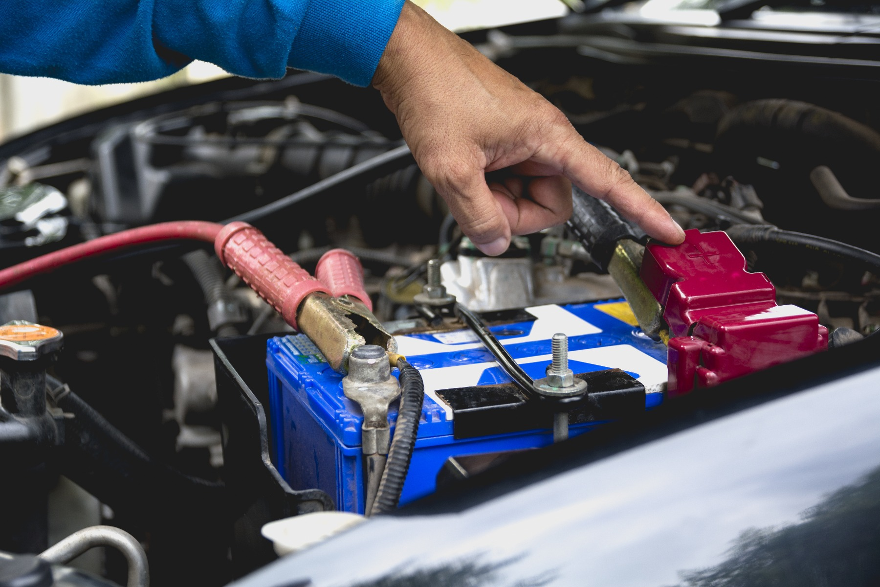 where to buy car batteries online