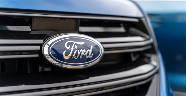 what are the qualities of a genuine ford battery